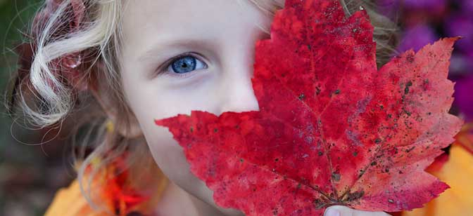 Young Girl with Red Fall Leaf